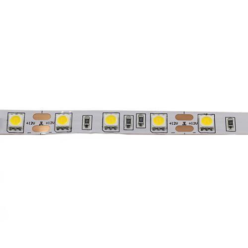 LED лента студено бяла 24VDC SMD5050 ECOLINE, 60LED/m, 14.4W/m, IP20, невлагозащитена, BS01-00313